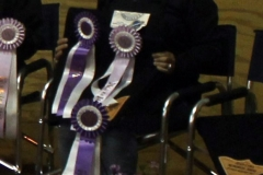 SrSr Western High Point Grand Champion Sherry Libby