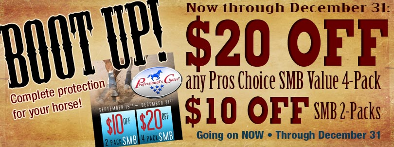 proschoice-bootup-site